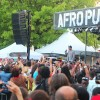 afropunk2012_inset2