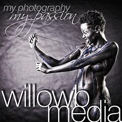 WillowBMedia_250adblock.jpg